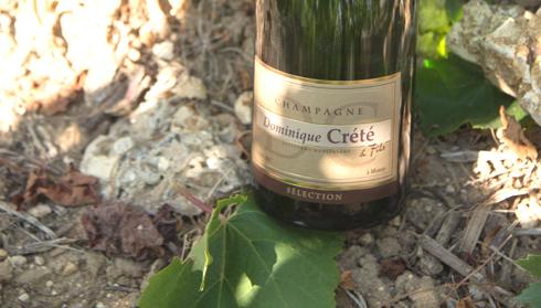Champagne Dominique Crété - Cuvée Sélection